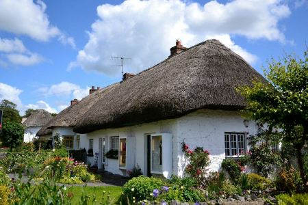 Free Old Reed House in Ireland