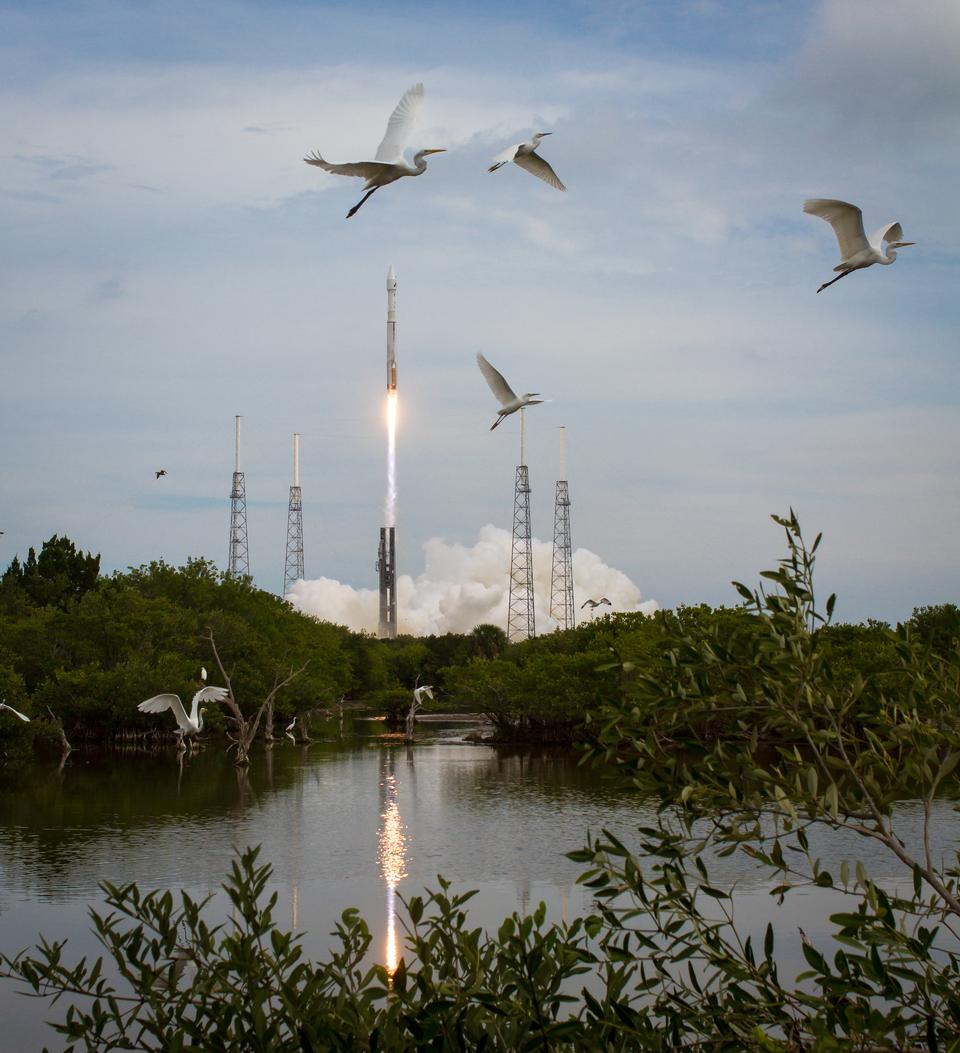 Free Taking Flight at Cape Canaveral