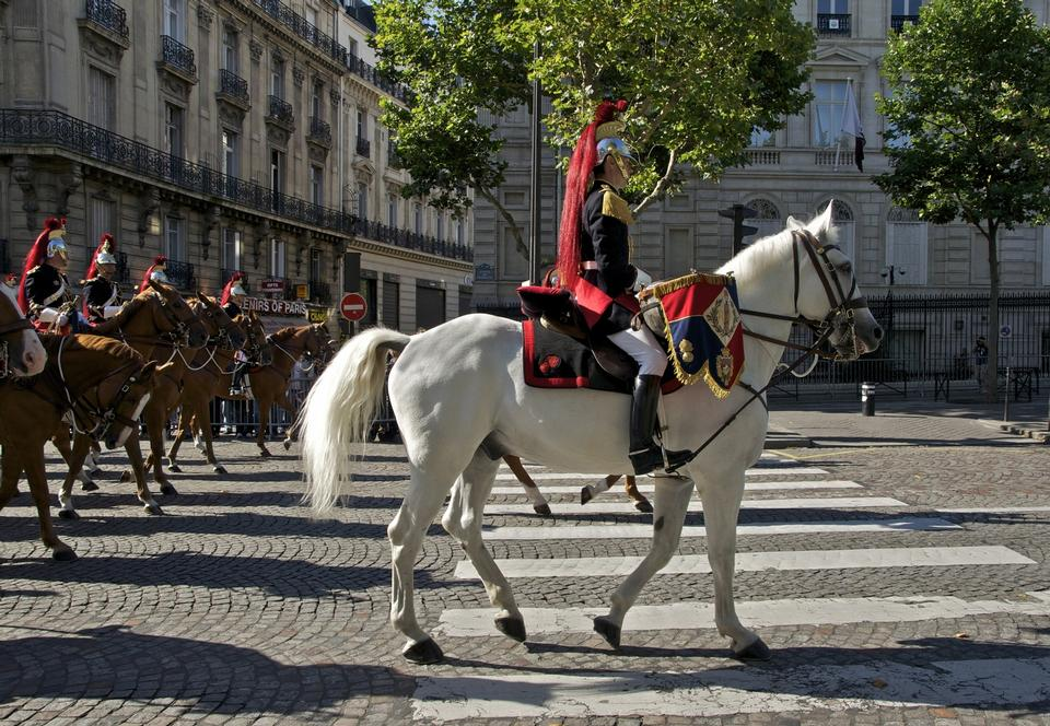 Free The royal horse guards