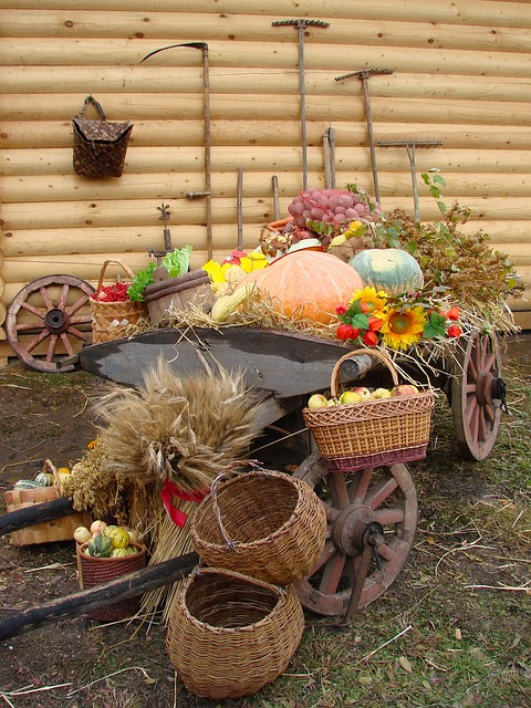 Free harvest produce cart wagon pumpkins apples