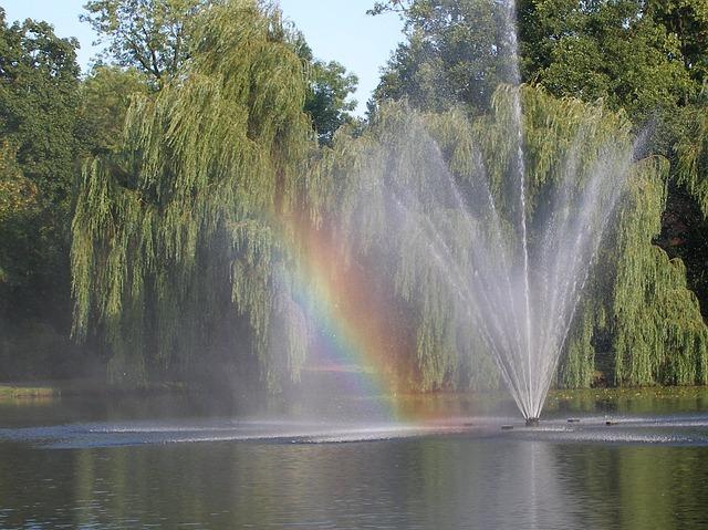 Free rainbow water pond nature