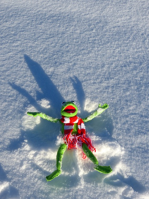 Free kermit frog fun snow snow angel winter cold