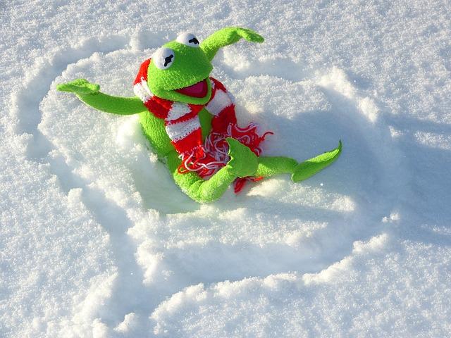 Free               kermit frog fun snow winter cold