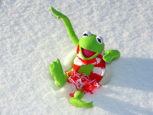 Free                kermit frog fun snow winter cold