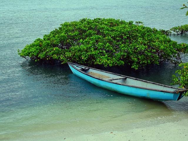 Free boat beach boats mar water fishing boat canoe
