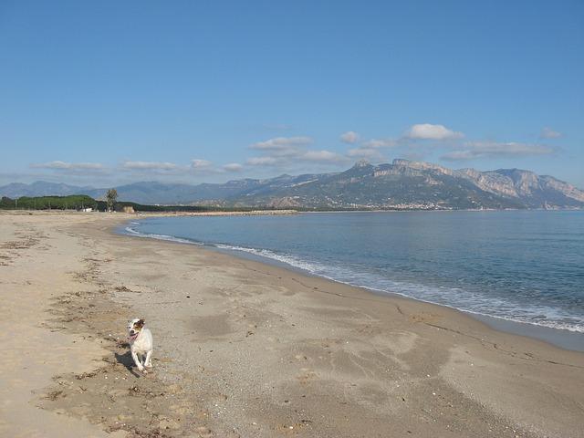 Free sardinia sea beach