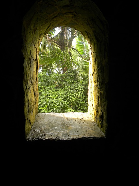 Free Photos: Stone age moss green puerto rico window portal | mephisto1970