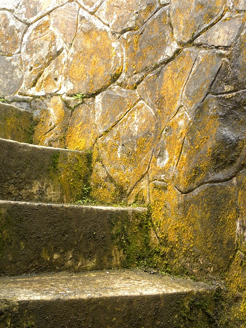 Free stairs stone age moss green puerto rico