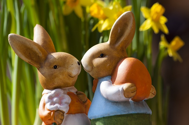 Free Photos:                easter bunny customs custom osterhasen few | Stefan Schweihofer