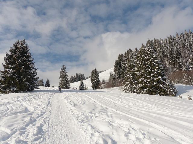 Free winter wintry winter magic snow traces snow tracks