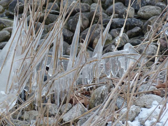 Free reed frozen ice iced eingeeist stones bank