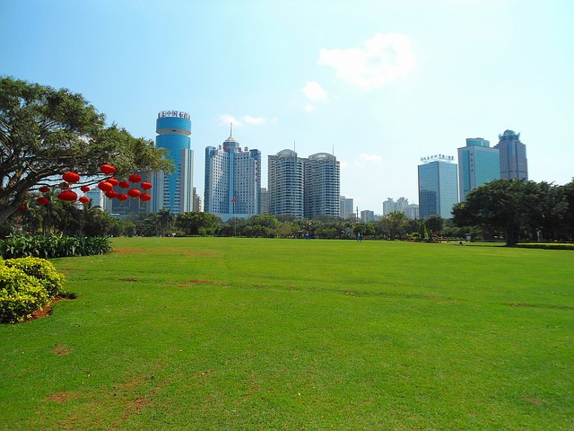 Free haikou china city buildings skyscrapers