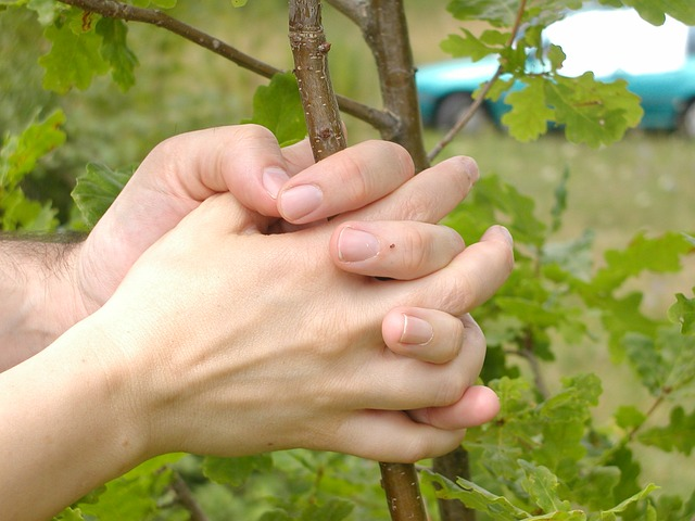Free hands tree finger