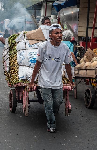 Free maracaibo venezuela man working cart market