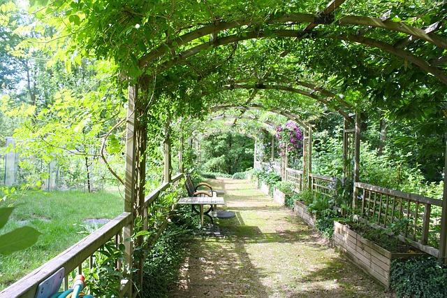 Free pergola shady walk garden walk arbor path leafy