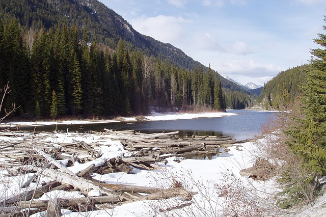 Free river winter season nature scenery landscape water