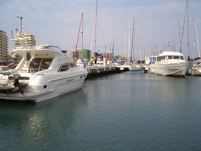 Free boats marina dock water jetty sea