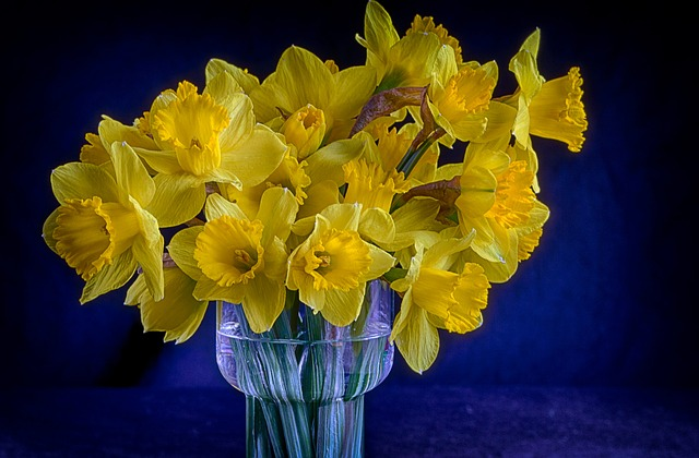 Free vase flowers bouquet daffodils yellow
