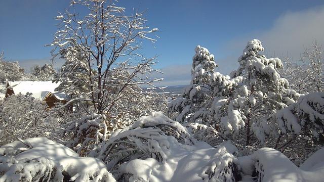 Free snowscape winter winter magic winter dream