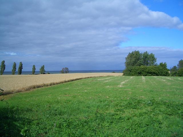 Free Photos: Denmark landscape sky clouds fields trees scenic | David Mark