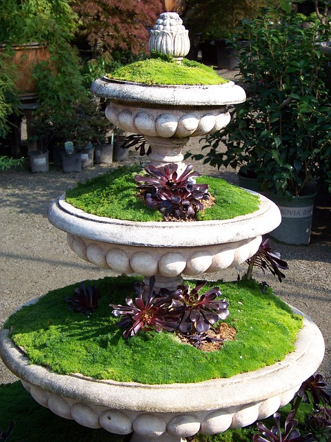 Free garden plant plants container three tier potted
