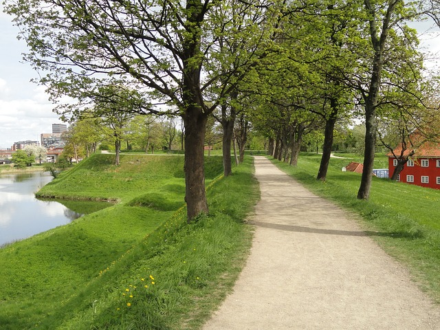 Free copenhagen denmark path trees grass river water