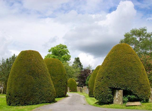 Free baslow england united kingdom sky clouds trees