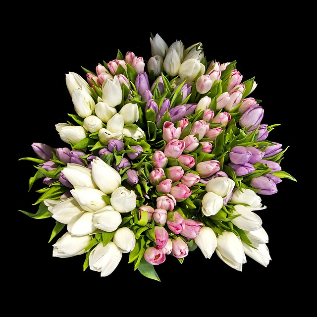 Free flowers bouquet tulips colorful color beautiful