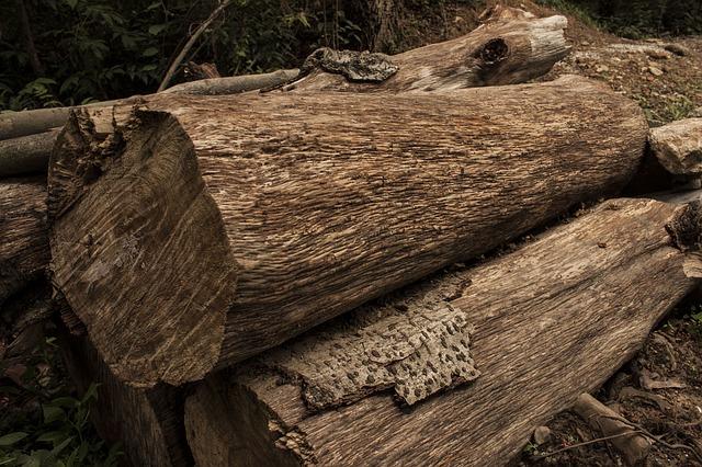 Free log wood farm lumber