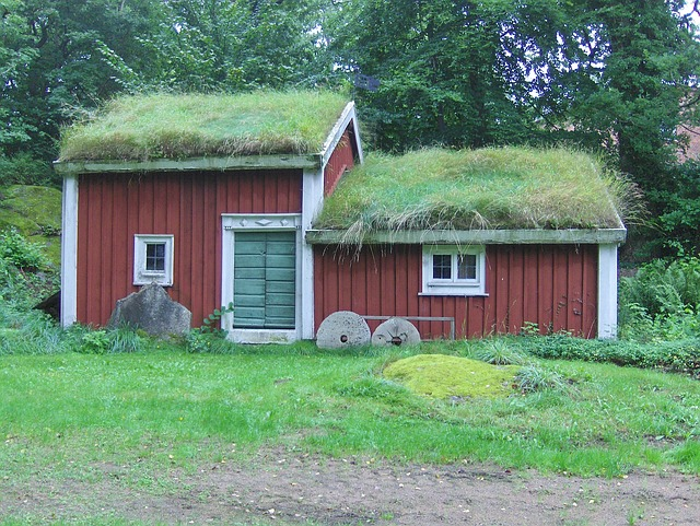 Free sweden house home building thatched roof grass