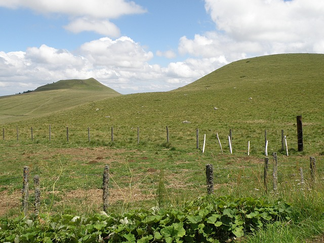 Free france landscape grass plants hills scenic sky