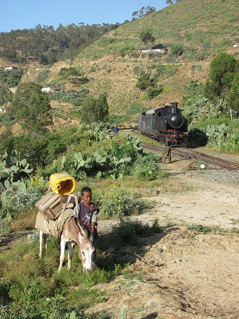 Free eritrea landscape boy donkey train hills trees