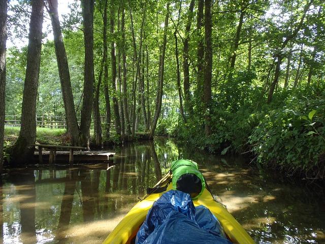 Free kanoo river nature poland kajakować green