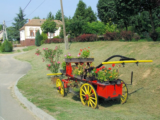 Free hungary landscape flowers cart wagon grass trees
