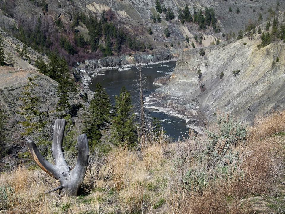 Free Fraser River in Canada