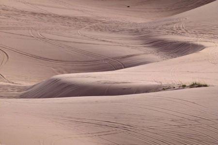 Free Windblown Sand Dune
