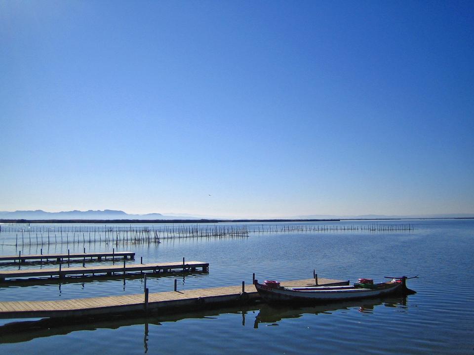 Free Albufera lagoon valencia, Spain