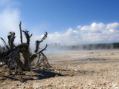 Free Yellowstone National Park Wyoming