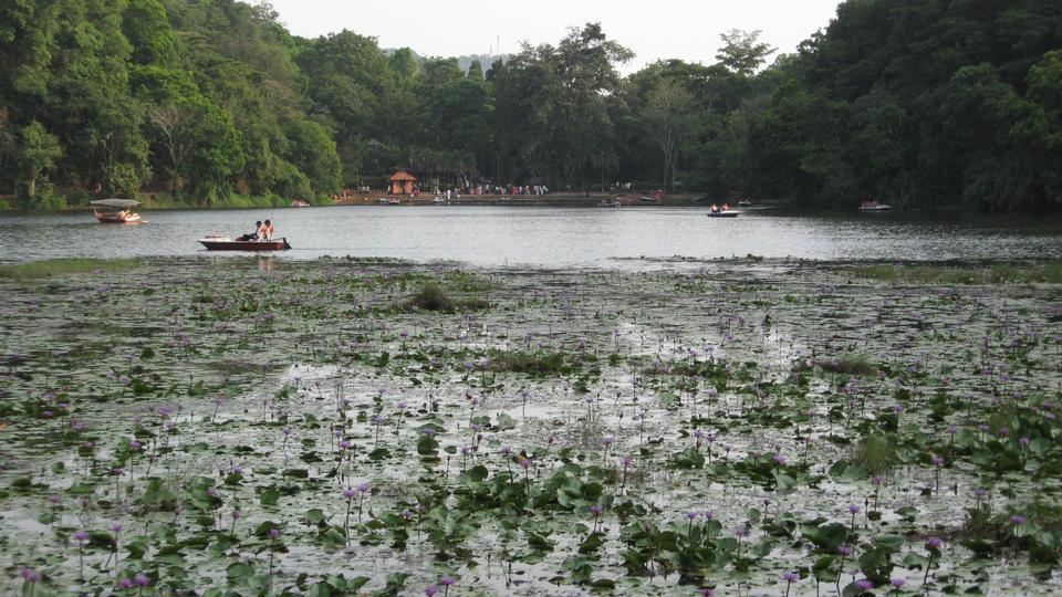 Free Pookode Lake in India