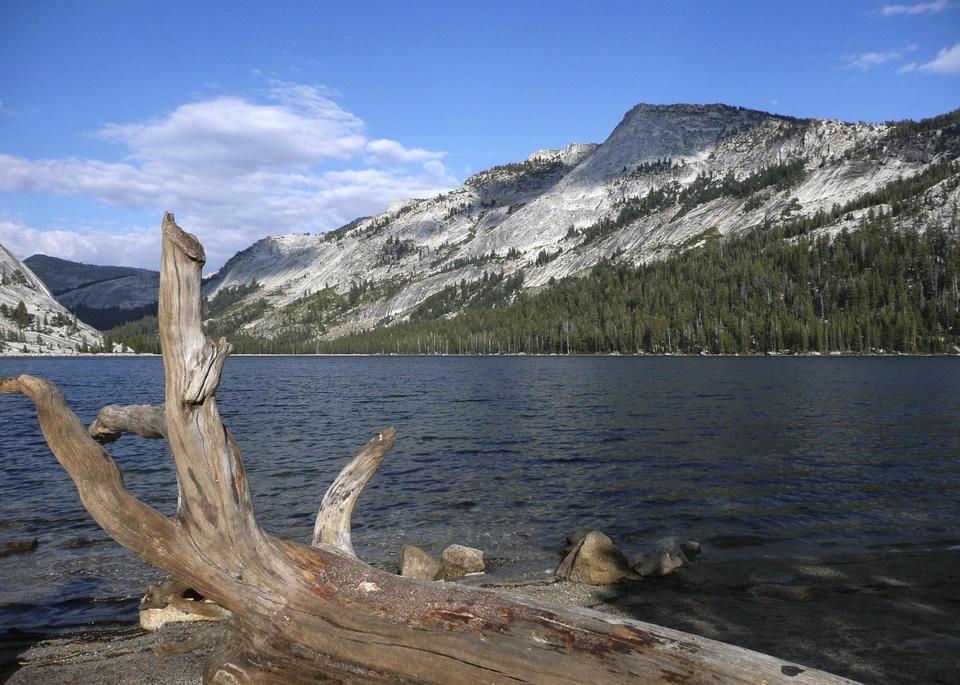 Free Yosemite National Park