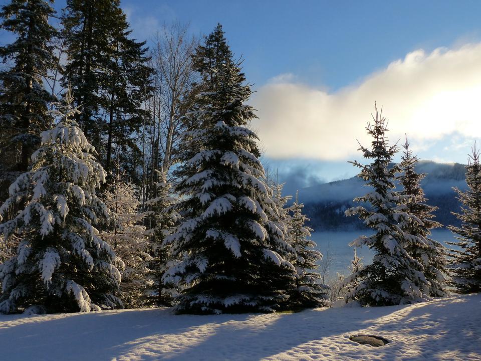 Free Winter Canim Lake BC Canada