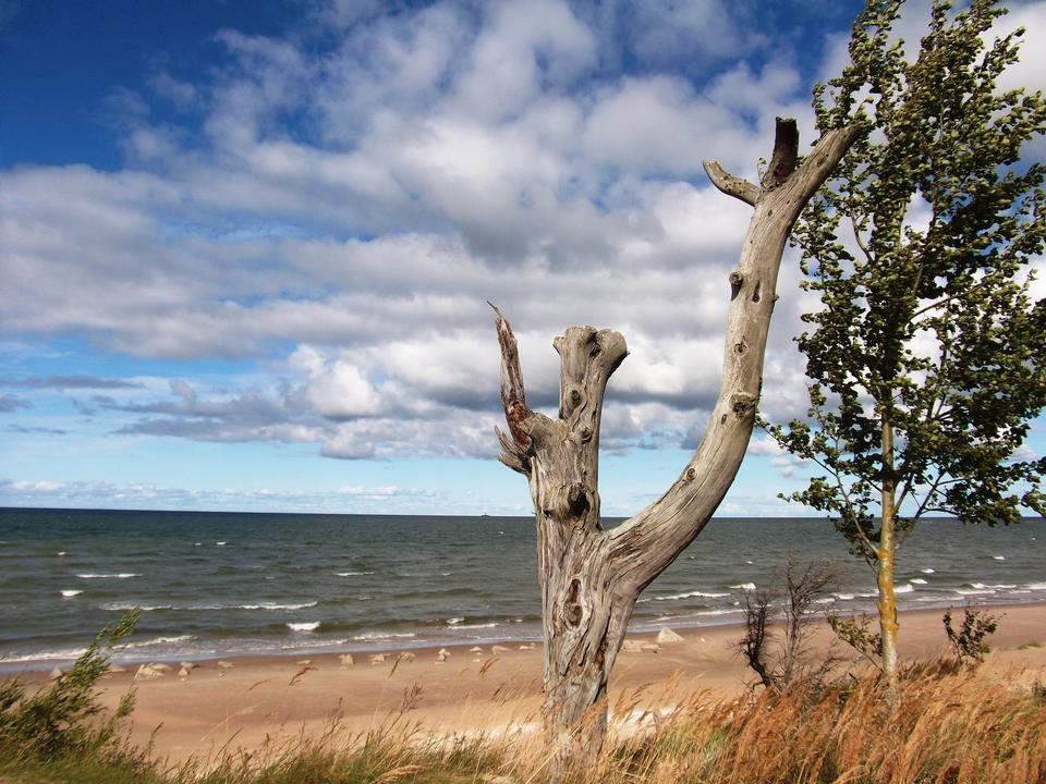 Free Baltic Sea at Kolka Cape