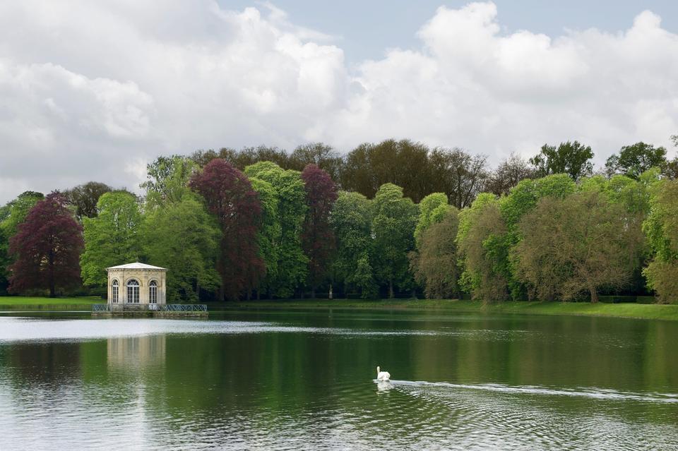 Free Carp Pond France
