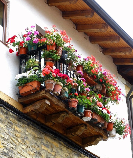 Free spain house home buildings flowers plants