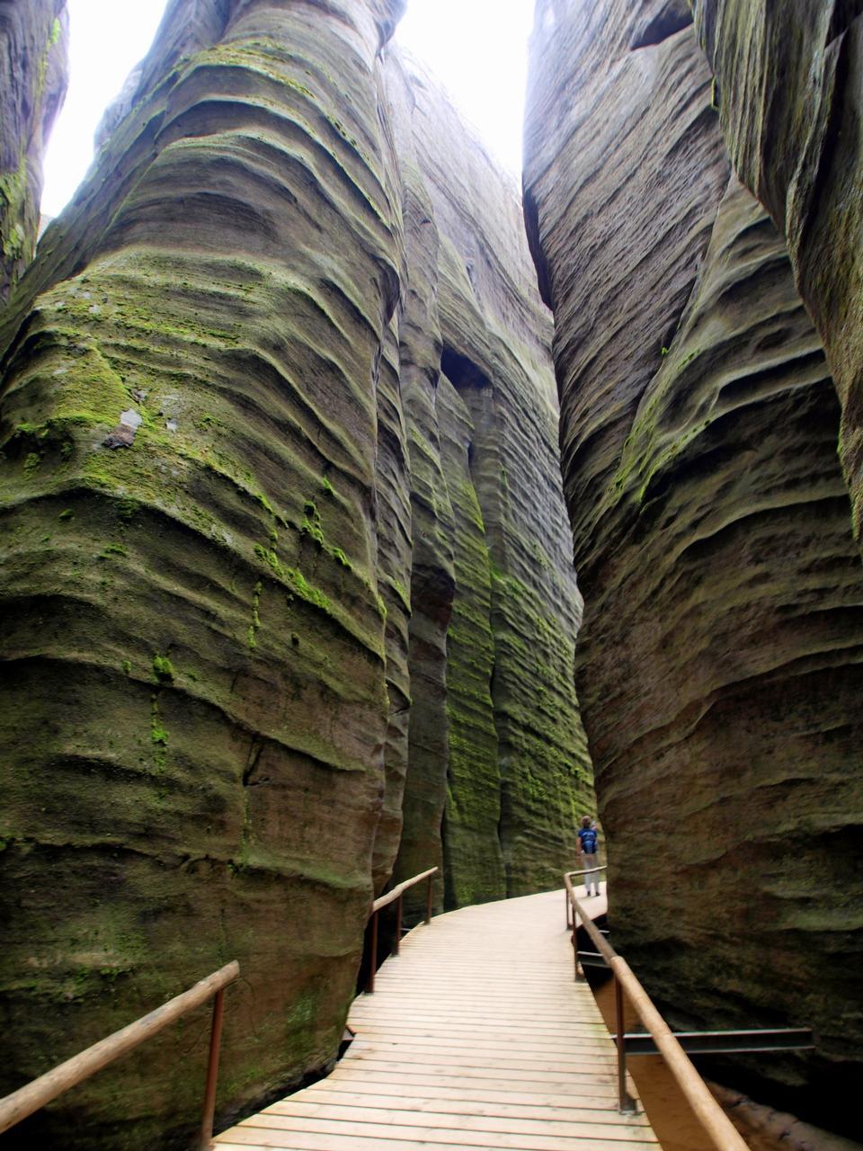Free Adrspach Teplice Rocks