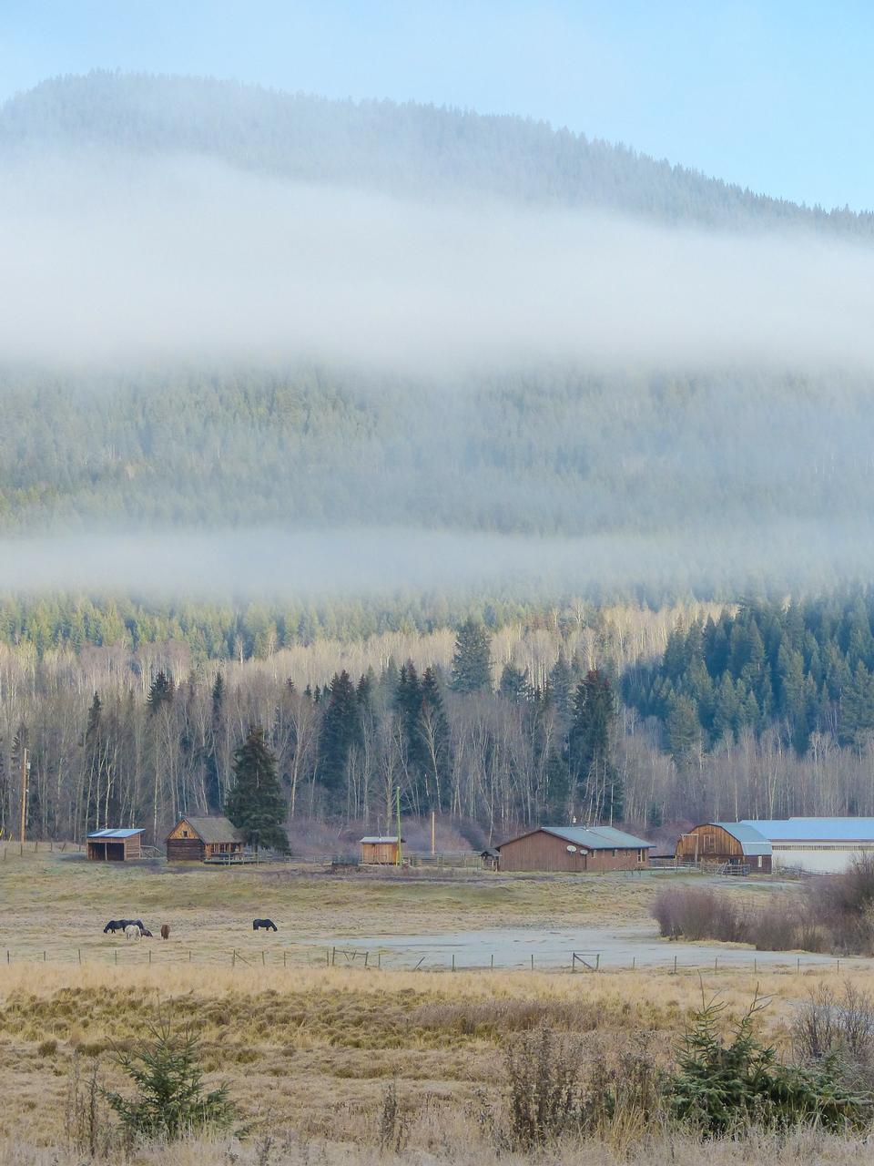 Free Landscape Scenery Foggy Early Morning