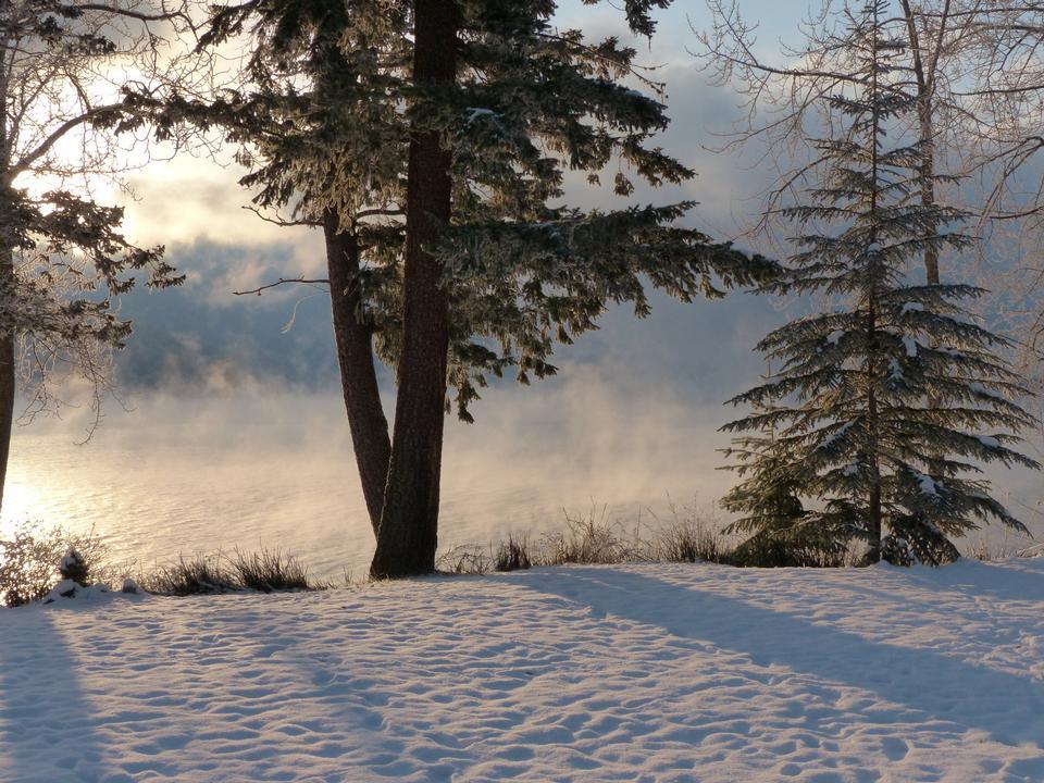 Free Canim Lake British Columbia Canada