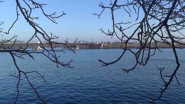 Free berlin spnadau water waters nature trees