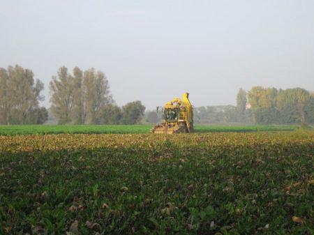 Free Combine harvester harvesting wheat