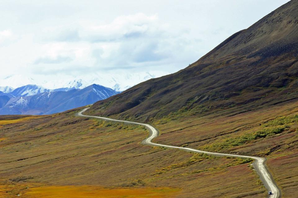 Free Denali Wilderness Alaska